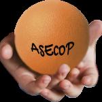 ASECOP Asociación Española de Coordinadores Parentales de Fundación Filia